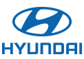 Used Hyundai in Elko